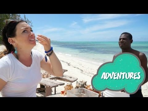 "TRAVEL GUIDE: Big Conch and Sea Viagra ""Turks and Caicos"""