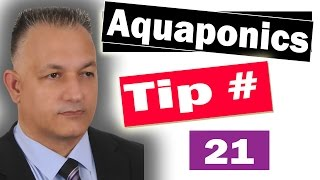 Aquaponics Garden - Successful Aquaponic Gardening Tips