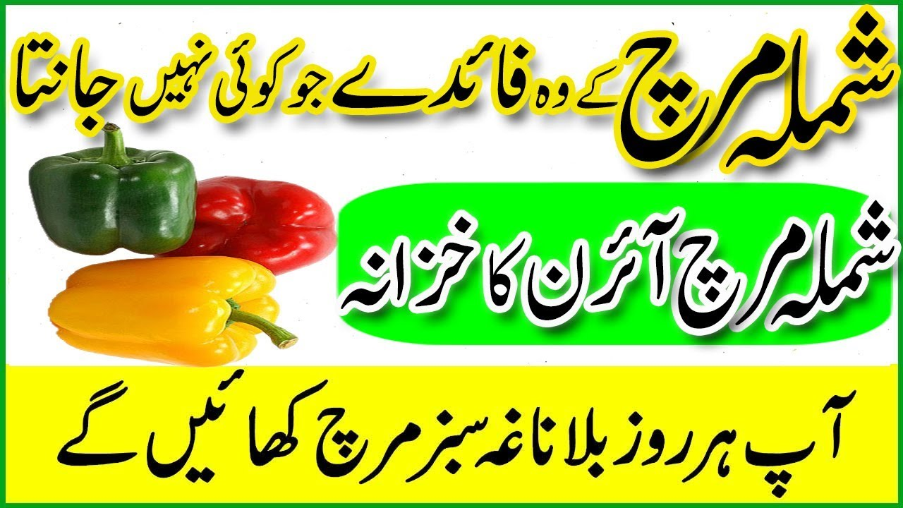 20 Amazing Benefits Of CapsicumBell Peppers (Shimla Mirch) For Skin, Hair And Health 20 Amazing Benefits Of CapsicumBell Peppers (Shimla Mirch) For Skin, Hair And Health new picture