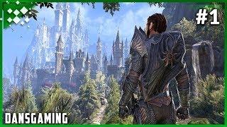 Let's Play Elder Scrolls Online: Summerset Isles Expansion! (Part 1) PC Gameplay - DansGaming