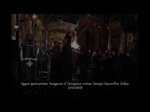 Литургия в Троицком соборе Троице Сергиевой Лавры