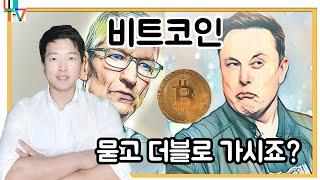 [글로벌뉴스]비트코인, 테슬라+애플+페이팔+비자+마스터…