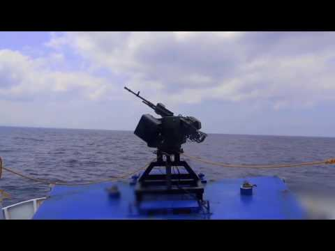 WAVE Systems - Remote Controlled Weapon Station (RCWS) Family