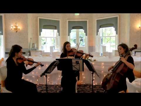 Make You Feel My Love (Bob Dylan) Wedding String Trio