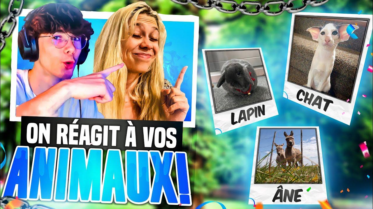 LES MEILLEURS ANIMAUX DE COMPAGNIE DES ABONNES (ft. ma sœur)