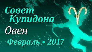 Овен, совет Купидона на февраль 2017. Любовный гороскоп.