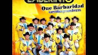 Play Caballos Del Pantanal