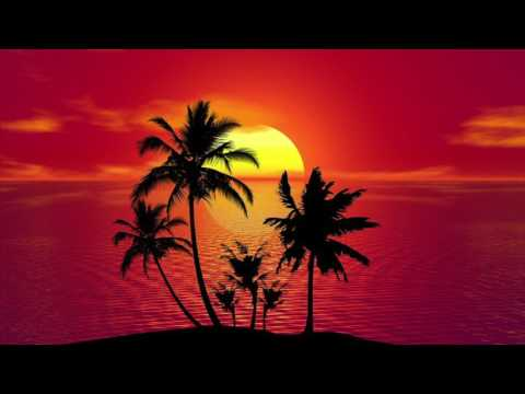"Dancehall Pop Instrumental Beat  - ""Tropic"""