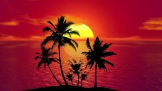 "Dancehall Pop Instrumental Beat  - ""Tropic"""