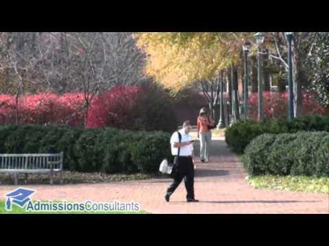 Darden Graduate School of Business Administration - University of Virginia
