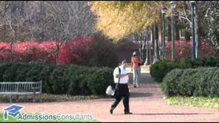 Darden Graduate School of Business Administration - University of Virginia