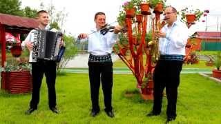 Nelu Negre,Ionut Negre si Anton Trifoi-brau instrumental 2014
