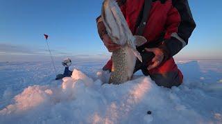 Очередная рыбалка на забытом озере Зимняя рыбалка 2021 Рыбалка в Казахстане