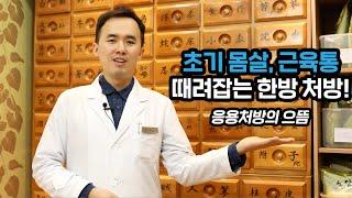 초기 감기, 몸살, 근육통에 좋은 대중적인 한약 처방