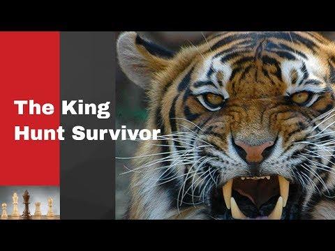 The King Hunt Survivor