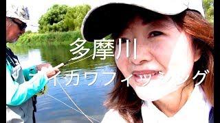 オイカワ釣り・毛針のウェットフライフィッシング Fly Fishing - iMovie
