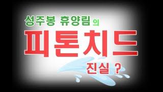 피톤치드효능/ 성주봉휴양림/산림욕/힐링센터/치유의숲/편…