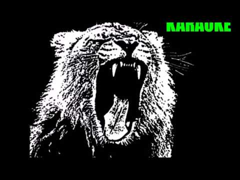 Martin Garrix - Animals (Karaoke Version)