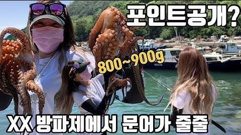 문어낚시 로또 맞았습니다!! 문어초보는 꼭봐야할영상  /문어포인트/문어채비/문어액션 Octopus fishing