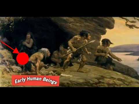 Life Of Early Human Beings, story
