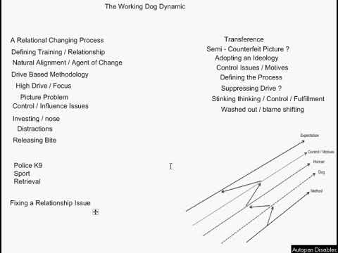 The Working Dog Dynamic - Technical Overview