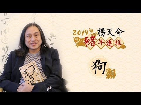 楊天命2019豬年十二生肖運程 《狗》