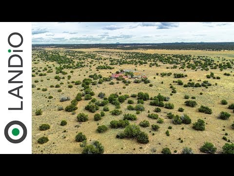 Land For Sale : 40 Acre Ranch with Trees, Utilities & County Road Frontage in New Mexico