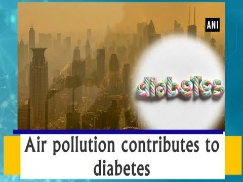 Air pollution contributes to diabetes - Health News