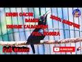 Viral Konin Gacor Full Isian Melimpah  Mp3 - Mp4 Download