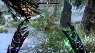 Skyrim: Master Alteration Mage