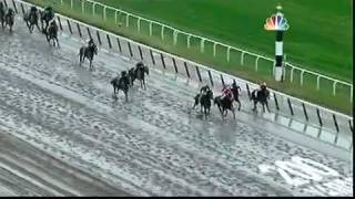 Belmont Stakes 2011 - Ruler on Ice