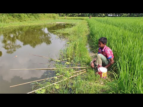 Best Fishing Video | Fishing With Hook | Fishing In Beautiful Village Natural