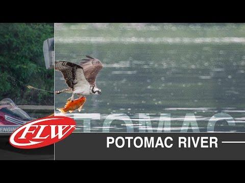 2015 FLW TV | Potomac River