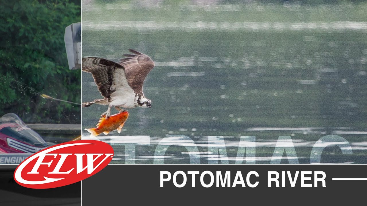Flw Tour Potomac River