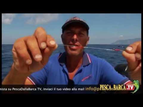 Pesca a traina: vacanze all'Elba, con Marco Volpi