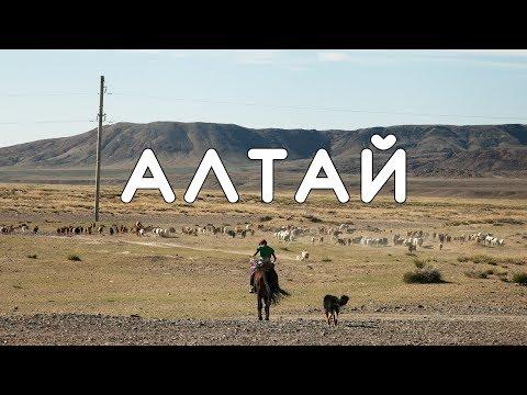 АЛТАЙ! Лошадиная ферма, ночуем в православном храме, кормим алкоголиков, как делают кумыс