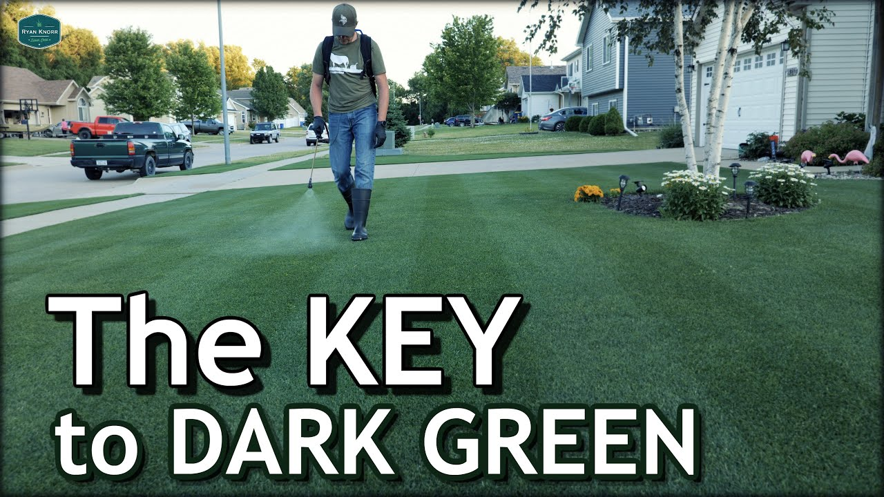 The Key to a DARK GREEN Lawn /// Let's Talk Micronutrients