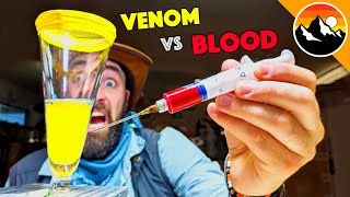 Human Blood vs. Snake Venom!