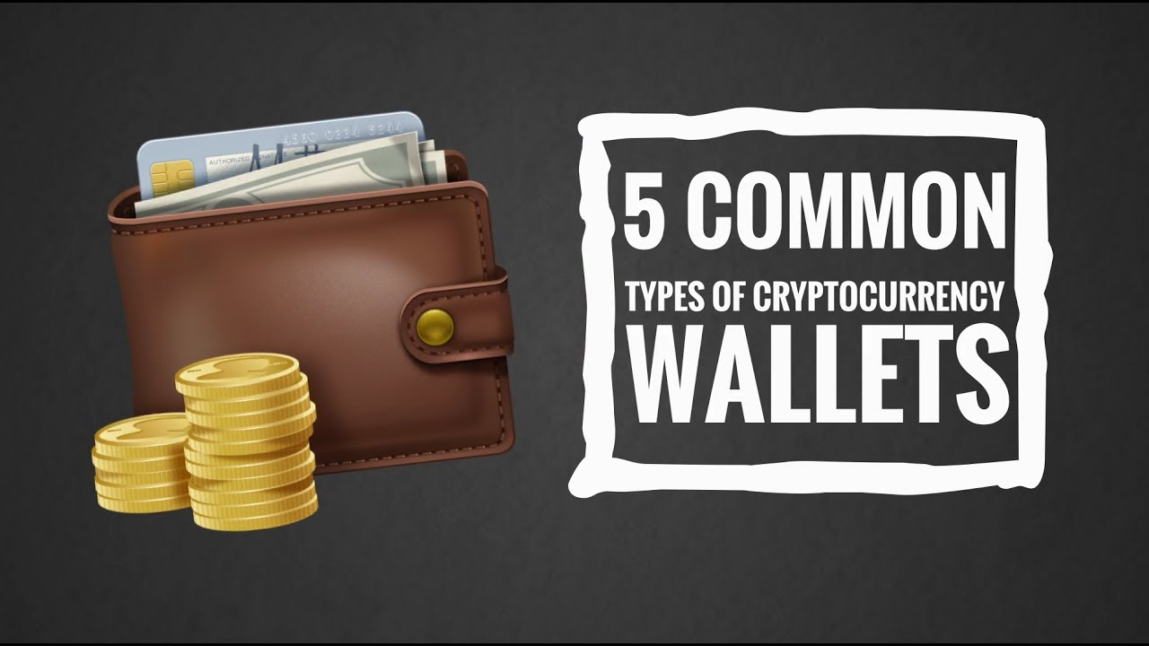 cryptocurrency wallet common types of wallet