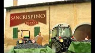Repeat youtube video San crispino Doppiaggio COMICO!!! IL NUMERO UNO!!