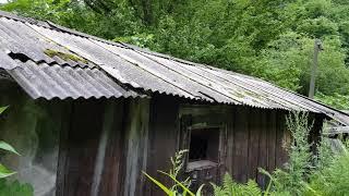 정선 고한읍 폐가들 즐비한데 그중에 특이한 집한체 즉시 취재기
