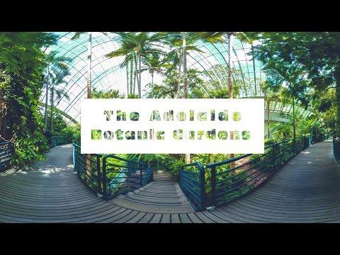 ADELAIDE BOTANIC GARDENS // SOUTH AUSTRALIA