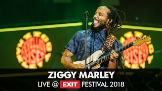 Ziggy Marley Live at Exit Festival 2018! → GET YOUR TICKETS now: ht...