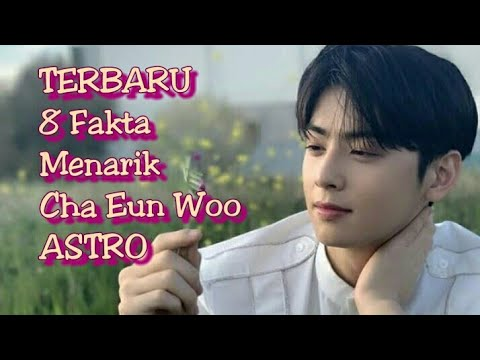 "8-fakta-menarik-cha-eun-woo-""my-id-is-gangnam-beauty"""