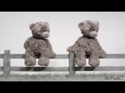 Teddy Bear -  love story...