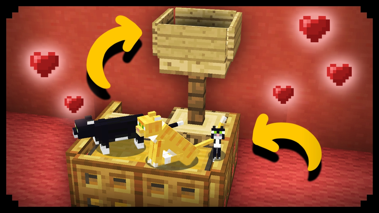 Minecraft Working Cat House YouTube