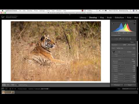 Lightroom Quick Tips - How to crop an image