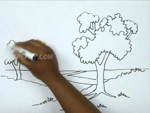 How To Draw A Natural Landscape