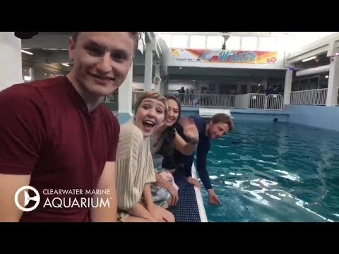 Dolphin Tale Actors Surprise Special Guests at CMA