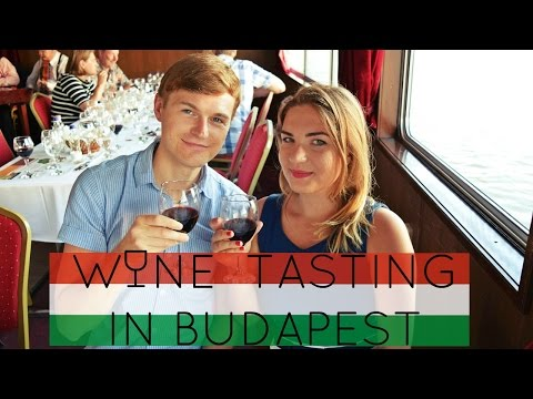 WINE CRUISE ON THE DANUBE IN BUDAPEST | Daily Travel Vlog 124, Hungary, HD